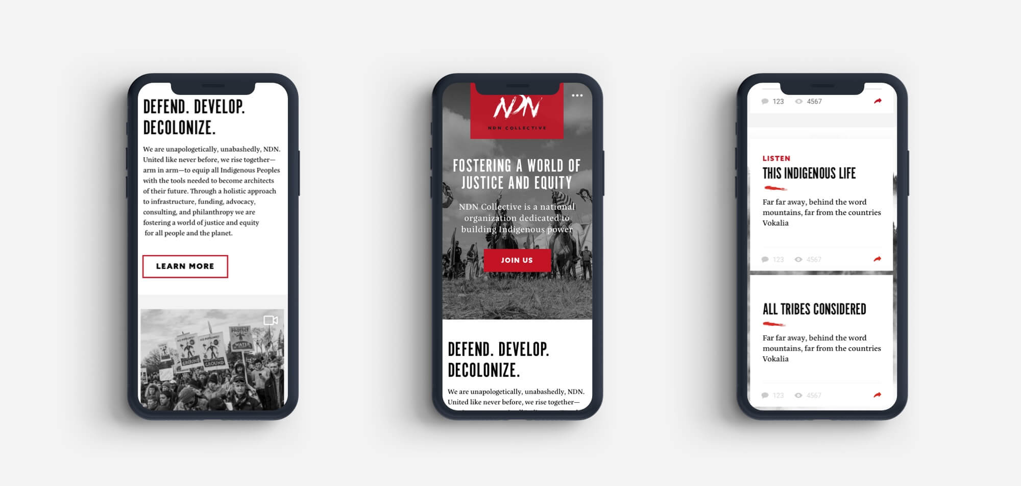 iphone mockups for the ndn website
